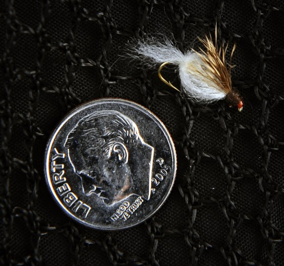 Pictured is the size 14 caddis emerger used for trout fishing. (Kenneth K. Lam/Baltimore Sun)