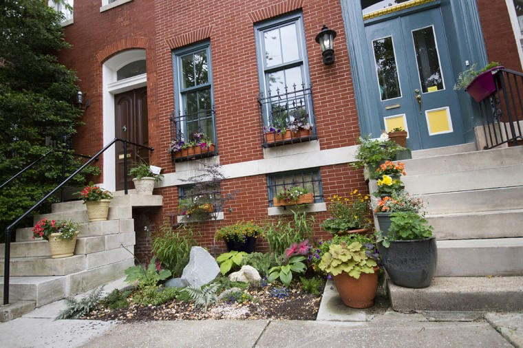 A garden grows outside a rowhome in Union Square ahead of a Bloom Your Block competition. (Kalani Gordon/Baltimore Sun/2014)