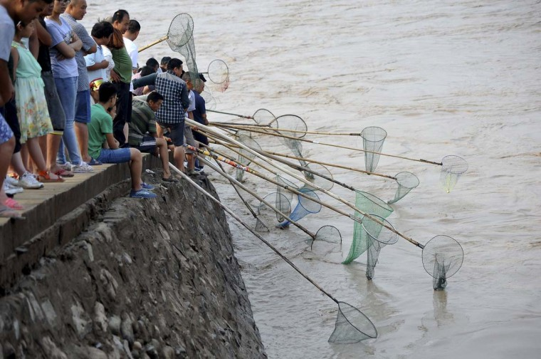 People fish along the bank of the Yellow River as the Sammenxia Dam discharges flood waters downstream in Pinglu, Shanxi province July 6, 2014. People risked sitting on the bank of the flooded river to catch the surge of fish forced to the river surface by the rushing water. Picture taken July 6, 2014. (China Daily/Reuters)