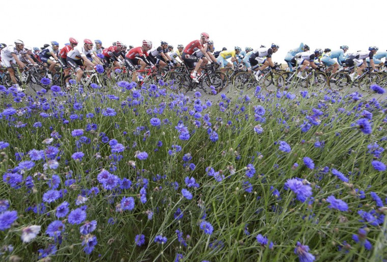 The pack of riders cycles on its way during the 194 km sixth stage of the Tour de France cycling race from Arras to Reims July 10, 2014. (Jacky Naegelen/Reuters)