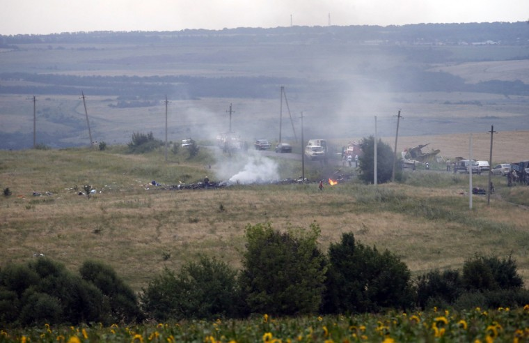 The site of a Malaysia Airlines Boeing 777 plane crash is seen near the settlement of Grabovo in the Donetsk region, July 17, 2014. The Malaysian Flight MH-17 was brought down over eastern Ukraine on Thursday, killing all 295 people aboard and sharply raising stakes in a conflict between Kiev and pro-Moscow rebels in which Russia and the West back opposing sides. (Maxim Zmeyev/Reuters)
