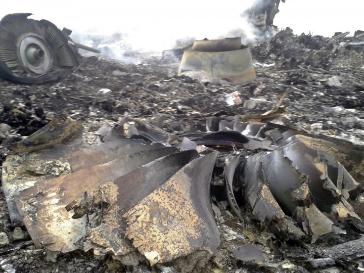 The site of a Malaysia Airlines Boeing 777 plane crash is seen at the settlement of Grabovo in the Donetsk region, July 17, 2014. The Malaysian airliner was shot down over eastern Ukraine by pro-Russian militants on Thursday, killing all 295 people aboard, a Ukrainian interior ministry official said. (Maxim Zmeyev/Reuters)