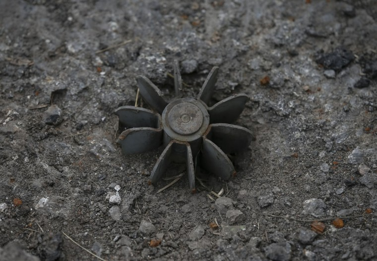 The remains of a 80mm mortar shell is seen in the eastern Ukrainian village of Semenovka on July 9, 2014. (REUTERS/Gleb Garanich)