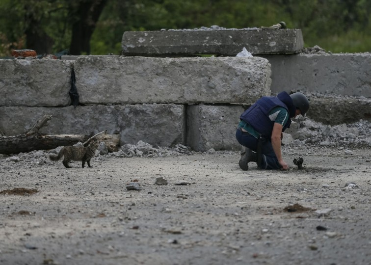 A sapper inspects a 80mm mortar shell as a cat stands near by in the eastern Ukrainian village of Semenovka on July 9, 2014. (REUTERS/Gleb Garanich)