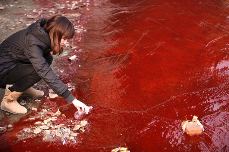 A journalist takes a sample of the red polluted water in the Jianhe River in Luoyang, Henan province December 13, 2011. According to local media, the sources of the pollution are two illegal chemical plants discharging their production waste water into the rain sewer pipes. (REUTERS/China Daily)