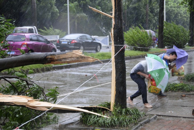 People bend low while trying to walk past fallen tree branches against strong winds and heavy rainfall as Typhoon Rammasun hit Nanning, Guangxi Zhuang Autonomous Region. The super typhoon has killed eight people in China since making landfall on Friday afternoon, state media said on Saturday, after hitting parts of the Philippines and leaving 77 dead. (China Stringer Network/Reuters)