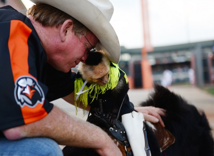 Tim Lepard nuzzles his monkey, Sam, as they wait to throw the first pitch at Ripken Stadium during an Ironbirds game in Aberdeen, Thursday, July 10, 2014. (Jon Sham/BSMG)