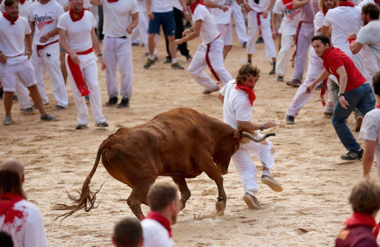 Runners avoid a fighting calf inside Pamplona Bullring during the second day of the San Fermin Running Of The Bulls festival, on July 7, 2014 in Pamplona, Spain. (Photo by Christopher Furlong/Getty Images)