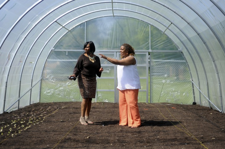 Elneeta Jones, left, principal of Pimlico Elementary/Middle School, talks with Jackie Peterson, right, community resource manager, in the school's new Urban Garden, a hoop house (greenhouse) on the grounds of Pimlico Elementary/Middle School in the Park Heights area of the city. (Barbara Haddock Taylor/Baltimore Sun/May 9, 2011)