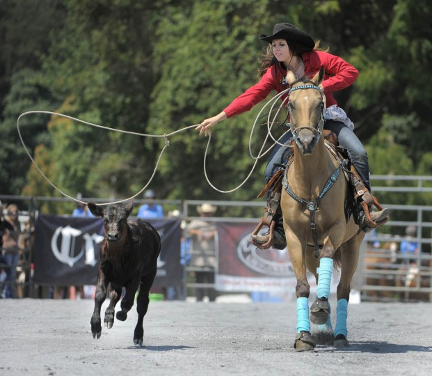 Nicole Andraka of Northern H.S. in Calvert County misses her attempt during the breakaway roping event. (Lloyd Fox/Baltimore Sun)