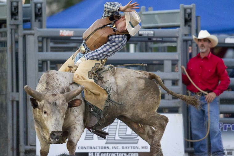 Bull rider Stoney Nicholson rides a bull during the Bull Blast at the 69th Annual Howard County Fair in West Friendship on Monday, August 4, 2014. (Jen Rynda/BSMG)