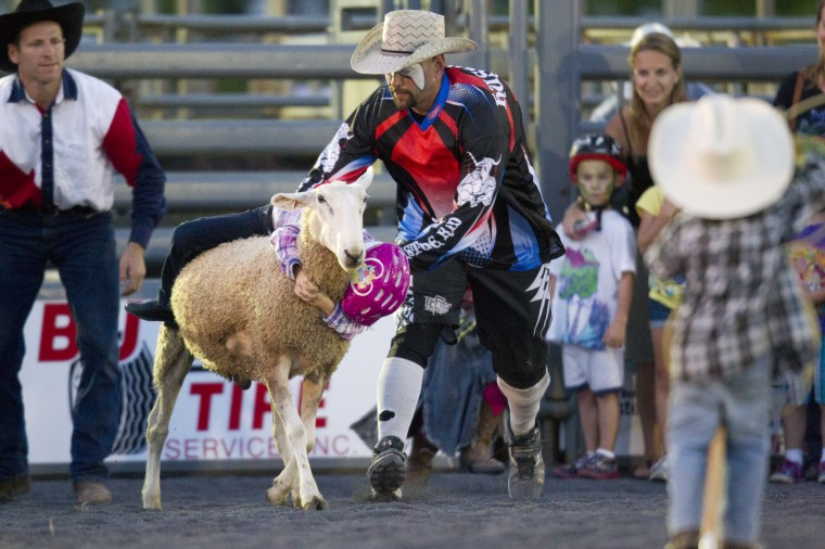 Elaina Deremer, 6, of Wolfsville hangs onto a sheep for the mutton busting competition during the Bull Blast at the 69th Annual Howard County Fair in West Friendship on Monday, August 4, 2014. (Jen Rynda/BSMG)