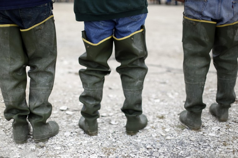 A group of workers stand in their work boots during a celebration event at Drakes Bay Oyster Company in Inverness, California July 31, 2014. (Stephen Lam/Reuters)