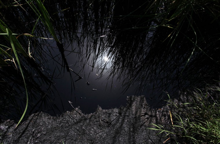 The sun is reflected in leaked oil on the shores of an irrigation canal that flows into the river San Juan in Cadereyta on August 22, 2014. An oil pipeline spill that contaminated a river in the northern Mexican state of Nuevo Leon will take months to clean up, the country's top water authority said. The 24-inch Madero-Cadereyta pipeline, owned by national oil company Pemex, was ruptured when thieves attempted to tap into it, the company said. (REUTERS/Daniel Becerril)