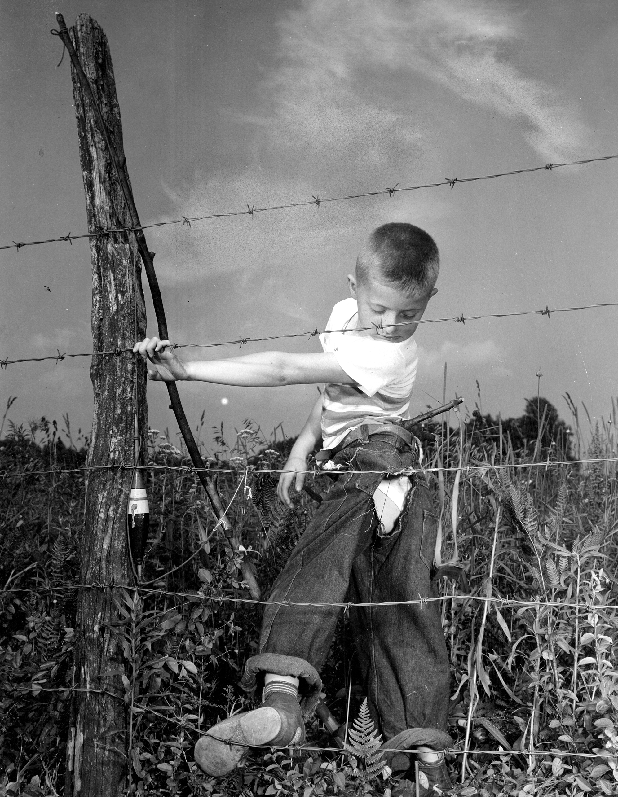 a aubrey bodine along maryland fences a aubrey bodine baltimore sun file