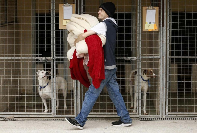A volunteer carries donated bedding to the kennels of dogs rescued from a fire at Manchester Dogs' Home, at their temporary home at Cheshire Dogs' Home near Warrington, northern England September 12. 60 dogs died and over 150 dogs where rescued during a fire in the Manchester dogs home, local media reported.    || PHOTO CREDIT: PHIL NOBLE  - REUTERS