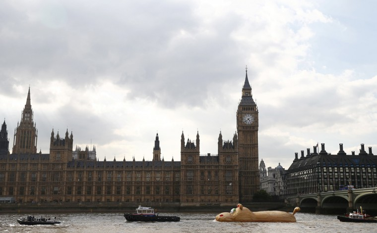 "A sculpture of a giant hippopotamus, ""HippopoThames"", built by artist Florentjin Hofman is towed up the Thames past the Houses of Parliament in central London, September 2, 2014. (REUTERS/Andrew Winning)"