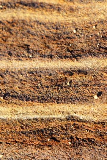 A cross-section close up of the rocks at Sunset Cliffs.