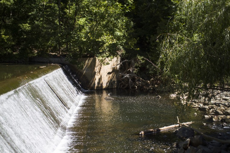 August 2014: Along the path to the Gwynns Falls trails in Dickeyville, Baltimore. (Kalani Gordon/Baltimore Sun)