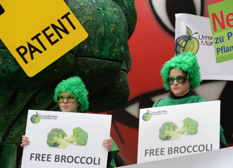 "Ecological activists hold posters reading ""free broccoli"" as they demonstrate in front of the European Patent Office (EPO) in Munich, southern Germany, on October 27, 2014 to protest against patents on plants and animals. Oral proceedings in the socalled patenting case ""Tomatoes / Broccoli II"" on the breeding methods were scheduled on October 27, 2014 by EPO's enlarged board of appeal. (Christof Stache/AFP/Getty Images)"