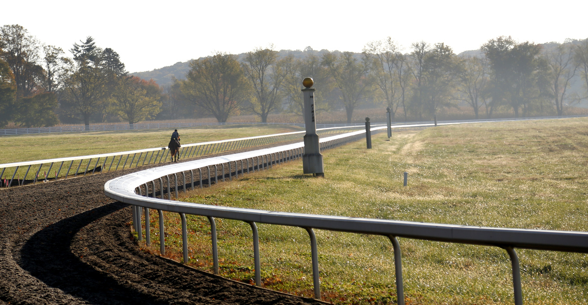 Sagamore horse farm in the autumn