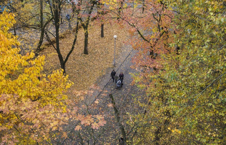A family takes a walk through Gorky park with the trees in autumn foliage in Minsk, October 12, 2014. (Vasily Fedosenko /Reuters)