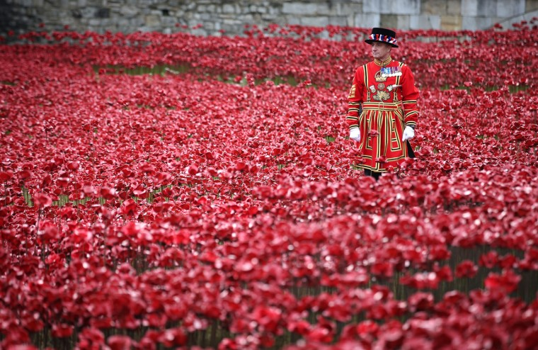 A Yeomen Warder awaits the placing of the last ceramic poppy in the moat of Tower of London to mark Armistice Day, on November 11, 2014 in London, England. The installation 'Blood Swept Lands and Seas of Red' by artists Paul Cummins and Tom Piper consists of 888,246 ceramic poppies - representing each of the commonwealth servicemen and women killed in the first world war. (Peter Macdiarmid/Getty Images)