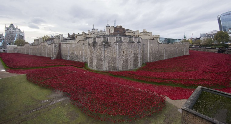 "A general view shows the ""Blood Swept Lands and Seas of Red"" installation of ceramic poppies by artist Paul Cummins and theatre stage designer Tom Piper, marking the centenary of the outbreak of the First World War, in the moat area of the Tower of London in London on November 11, 2014. Designed as a tribute to Britain's World War I dead, a blood-red trench of ceramic poppies around the Tower of London has become a national phenomenon as Britons flock to remember the fallen in generations of war. The final poppy was planted on Armistice Day November 11. The installation now consists of over 800,000 ceramic poppies, each one symbolising a British and Commonwealth military fatality in WW1. (Andrew Cowie/AFP/Getty Images)"
