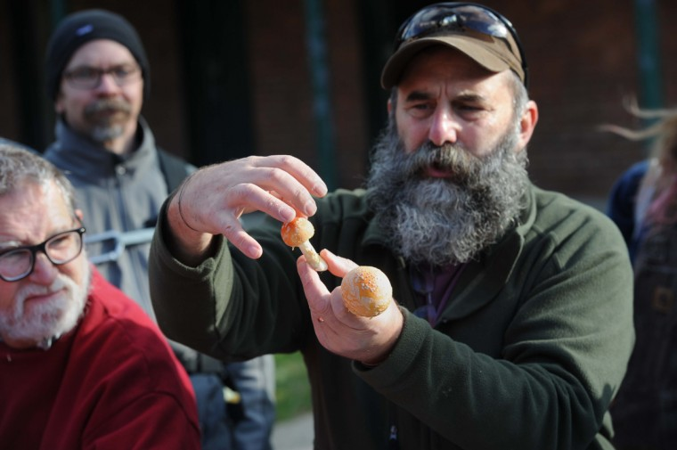 Biologist Nick Spero talks about Aminita muscaria, a hallucinaginic mushroom, as people gather for a Natural History Society of Maryland meetup to search for mushrooms in Herring Run Park. (Kim Hairston/Baltimore Sun)