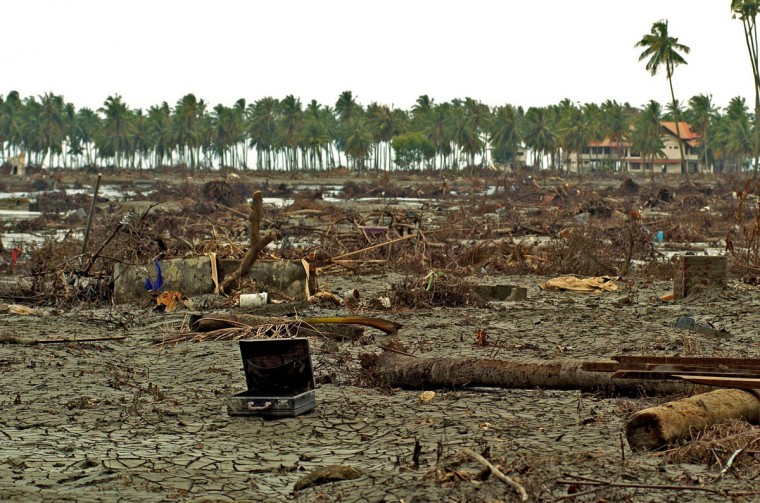 A briefcase rests 2 kilometers away from the shoreline (the coconut trees in background mark the beach area) swept inland by the tsunami at the village of Rukoh Friday, Jan. 14, 2004. (Karl Merton Ferron, Baltimore Sun)