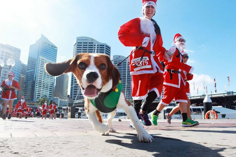 Sydneysiders run along the Darling Harbor boardwalk during the 2014 Variety Santa Fun Run on December 7, 2014 in Sydney, Australia. Variety is the children's charity committed to help Australian children who are sick, disadvantaged or have special needs. (Lisa Maree Williams/Getty Images)