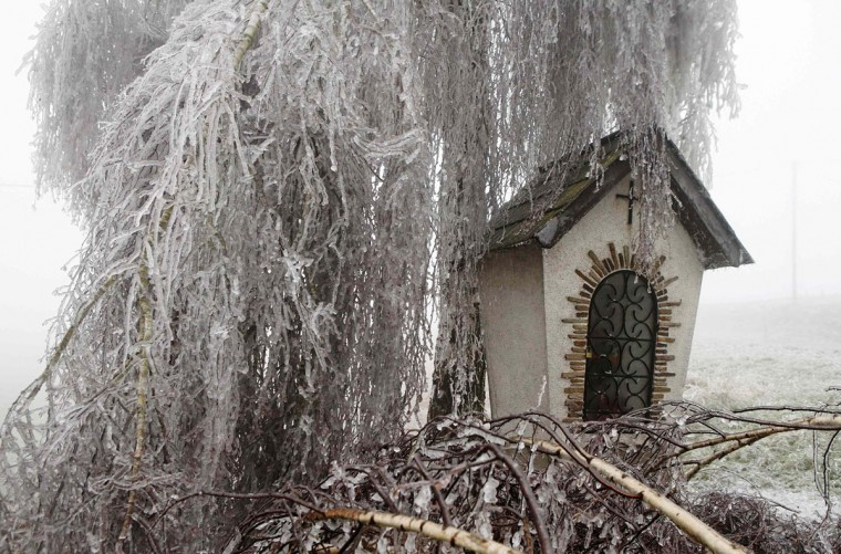 Ice covered leafs of a tree hang over a roadside shrine near Kottes in northern Austria, December 2, 2014. Freezing fog and rain covered parts of the region with ice, causing blocked roads due to fallen trees and closed schools for security reasons, local media report. (REUTERS/Heinz-Peter Bader)