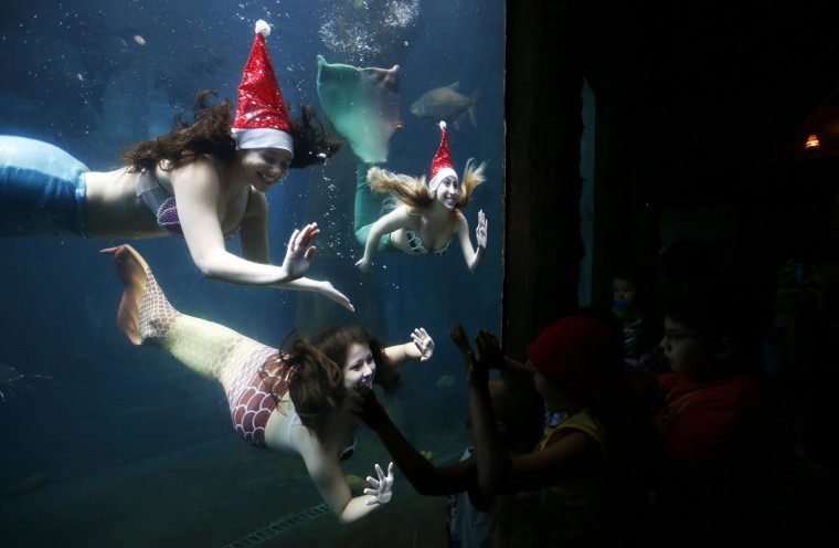 Women dressed as mermaids wearing a Santa Claus hat perform to students from inside a tank at the Sao Paulo Aquarium December 17, 2014. According to organizers, the performance aims to narrate about the myth and legend of mermaids. (Paulo Whitaker/Reuters)