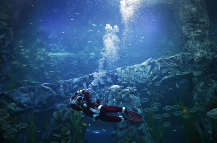 A diver dressed in a Santa Claus costume makes a heart gesture while performing during an event celebrating the upcoming Christmas holiday at Lotte World Aquarium in Seoul December 8, 2014. (Kim Hong-Ji/Reuters)