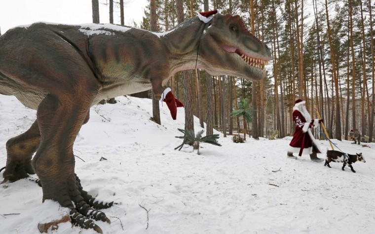 "A man dressed as Father Frost, the Russian equivalent of Santa Claus, walks with Knopka, a Cameroon dwarf goat, through the ""Dinosaurs Park"", located in the Taiga area at the Royev Ruchey zoo in the suburbs of Russia's Siberian city of Krasnoyarsk, December 16, 2014. Picture taken December 16, 2014. (Ilya Naymushin/Reuters)"