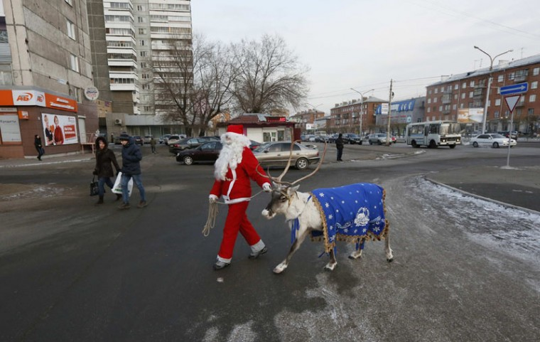 An employee of a local zoo, dressed as Santa Claus, walks with a reindeer and meets with local residents while marking the upcoming Christmas and New Year's celebrations in a street in Russia's Siberian city of Krasnoyarsk, December 5, 2014. (Ilya Naymushin/Reuters)