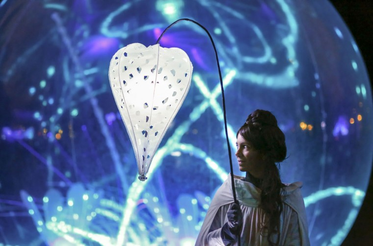 View of Jardin d'Hiver installation by artist Christophe Martine during the rehearsal for the Festival of Lights in central Lyon late in the night December 4, 2014. (REUTERS/Robert Pratta)