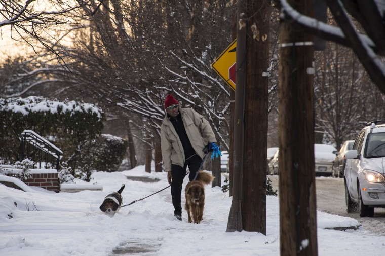 A man walks his dogs in Washington on January 6, 2015 after snow fell for the first time this winter. (Nicholas Kamm/AFP/Getty Images)