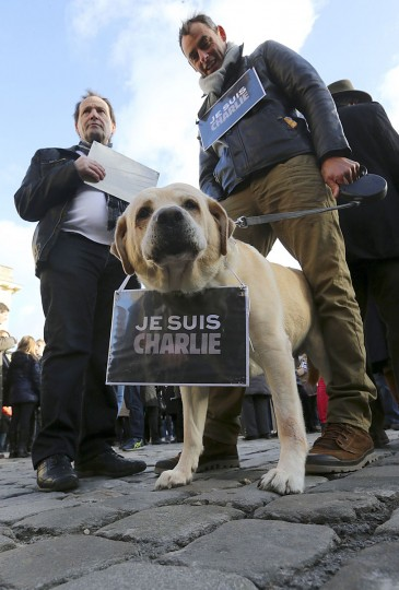 """A dog wearing the note """"Je suis Charlie (I am Charlie) around its collar takes part in a unity rally """"Marche Republicaine"""" in Reims on January 11, 2015, in tribute of the 17 victims of the three-days killing spree. The killings began on January 7 with an assault on the Charlie-Hebdo satirical magazine in Paris that saw two brothers massacre 12 people including some of the country's best known cartoonists and the storming of a Jewish supermarket on the eastern fringes of the Capital which killed 4 local residents . (Francois Nascimbeni/AFP/Getty Images)"""