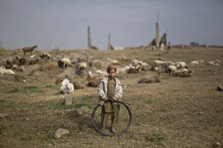 An Afghan refugee boy holds a tire while standing next to his sheep feeding in a field on the outskirts of Islamabad, Pakistan, Saturday, Jan. 24, 2015. (AP Photo/Muhammed Muheisen)
