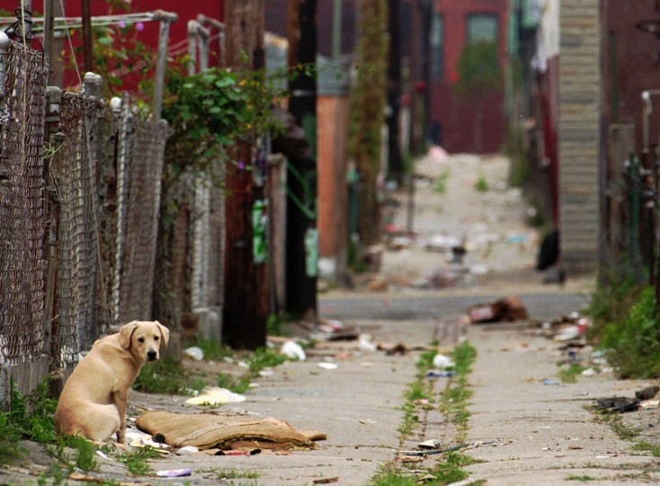 Nov. 16, 1993: The alley behind Pigtown's Seargant Street is littered with debris and garbage. (Amy Deputy/Baltimore Sun)