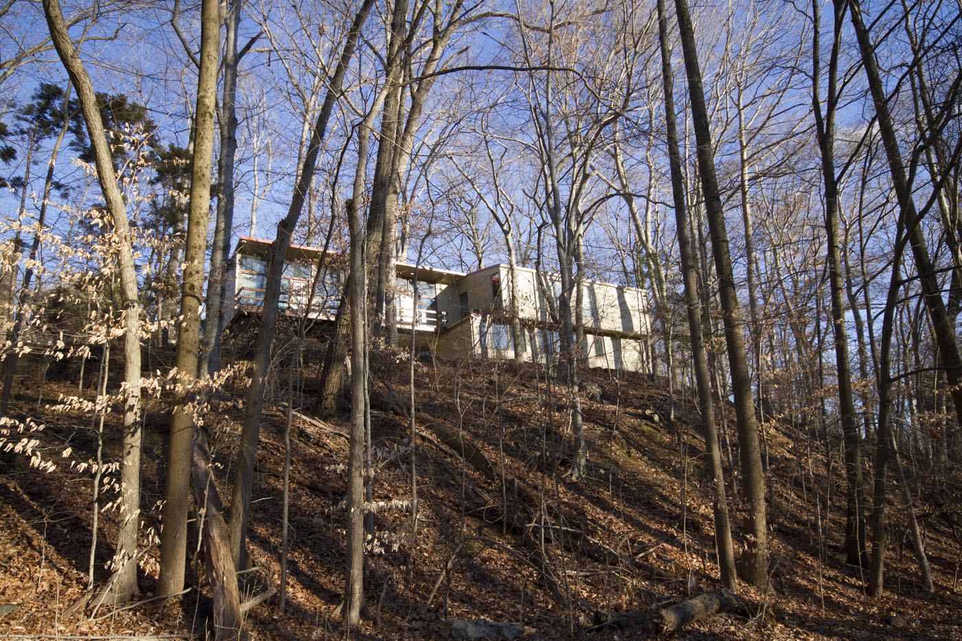 Mount Washington: Exploring Baltimore's neighborhoods