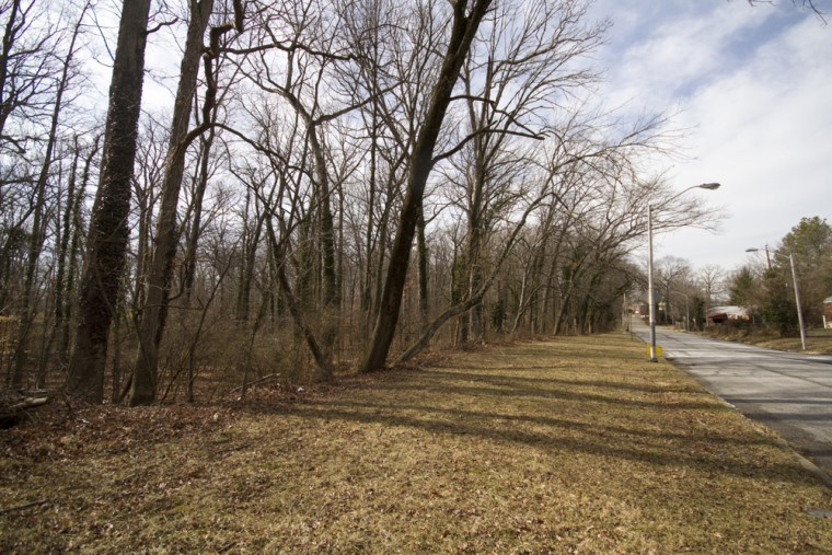 A wooded area sits in the Howard Park neighborhood of Baltimore. (Kalani Gordon, Baltimore Sun, Feb. 2015)