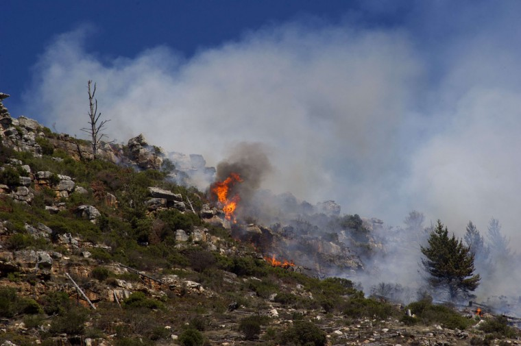 A picture shows vegetation burning in a bush fire in the mountains on the Cape Peninsula, on March 2, 2015, in the greater Cape Town area. (RODGER BOSCH/AFP/Getty Images)