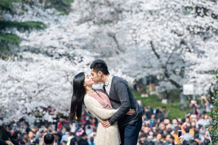 This picture taken on March 21, 2015 shows a couple kissing in front of blooming cherry blossoms in Wuhan in central China's Hubei province. The cherry blossoms, now in full bloom, attracted tens of thousands of visitors, local media reported. (China Out/AFP/Getty Images)