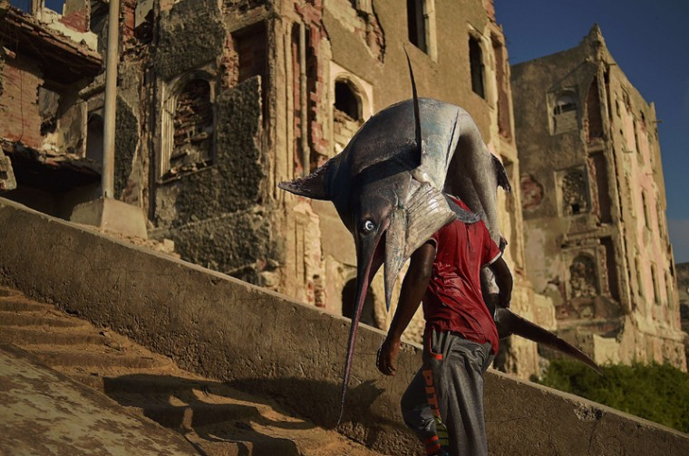 A man carrying a sailfish walks through Hamarweyne district in South Mogadishu on March 25. (CARL DE SOUZA/AFP/Getty Images)