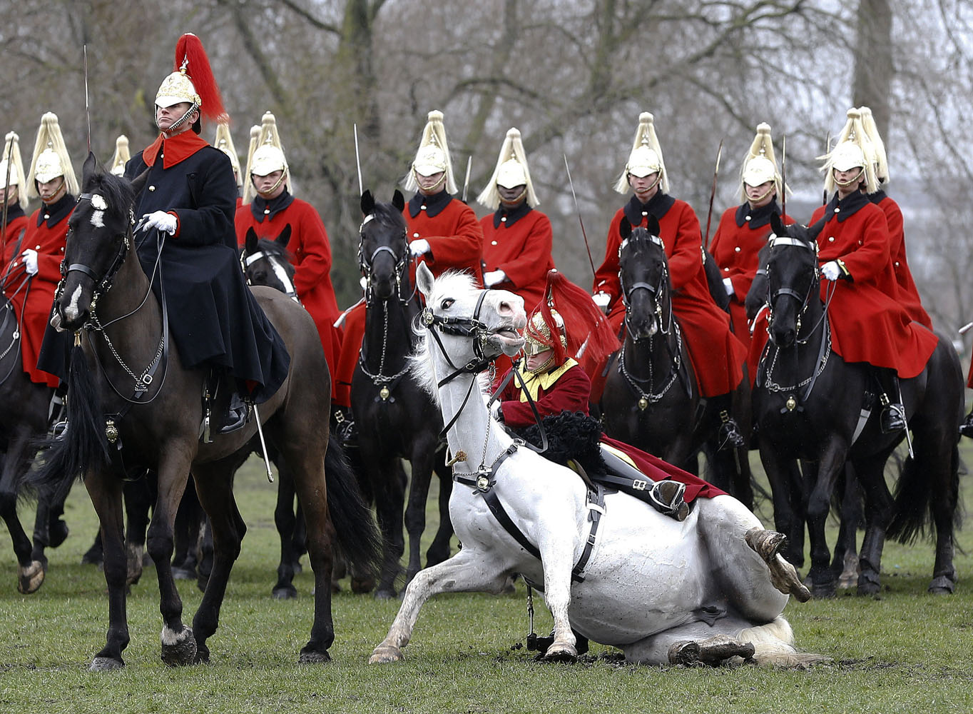 Household Cavalry Mounted Regiment Parade Oklahoma