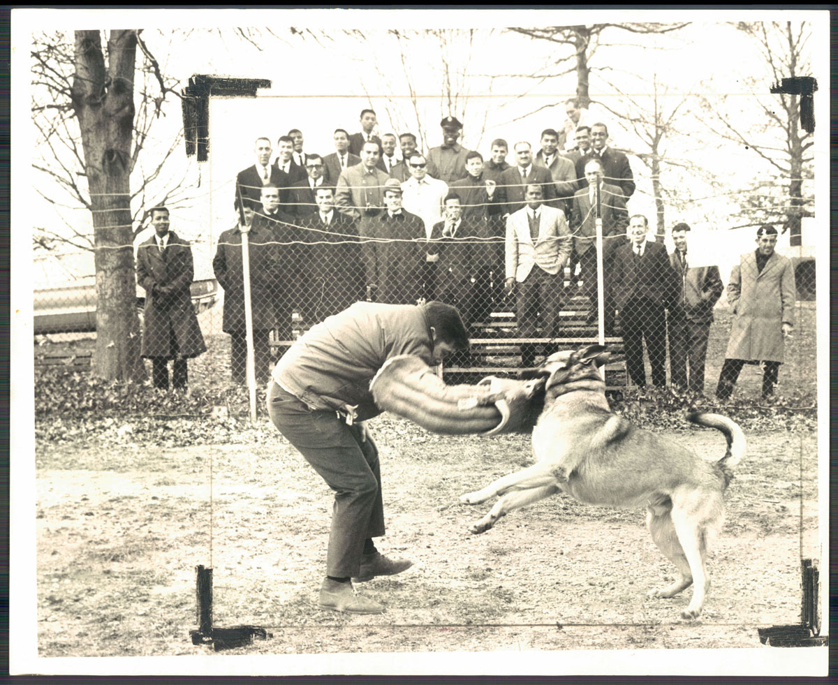 From the Vault: K-9 Corps in Baltimore