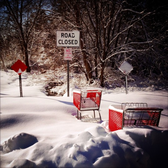 Shopping carts stuck in the snow in Edgewood, MD.  (Lloyd Fox/Baltimore Sun)
