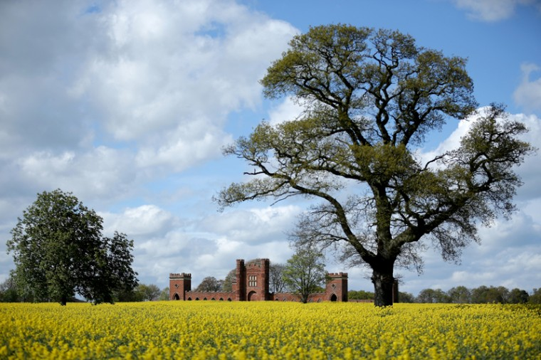 Rapeseed begins to bloom and besets Vernons Folly on Tuesday in Sudbury, England. The deercote is known locally as Vernons Folly is believed to have been built in 1723 by Lord George Vernon, the owner of nearby Sudbury Hall. The lord built the fortress like structure to keep his deer in. (Christopher Furlong/Getty Images)